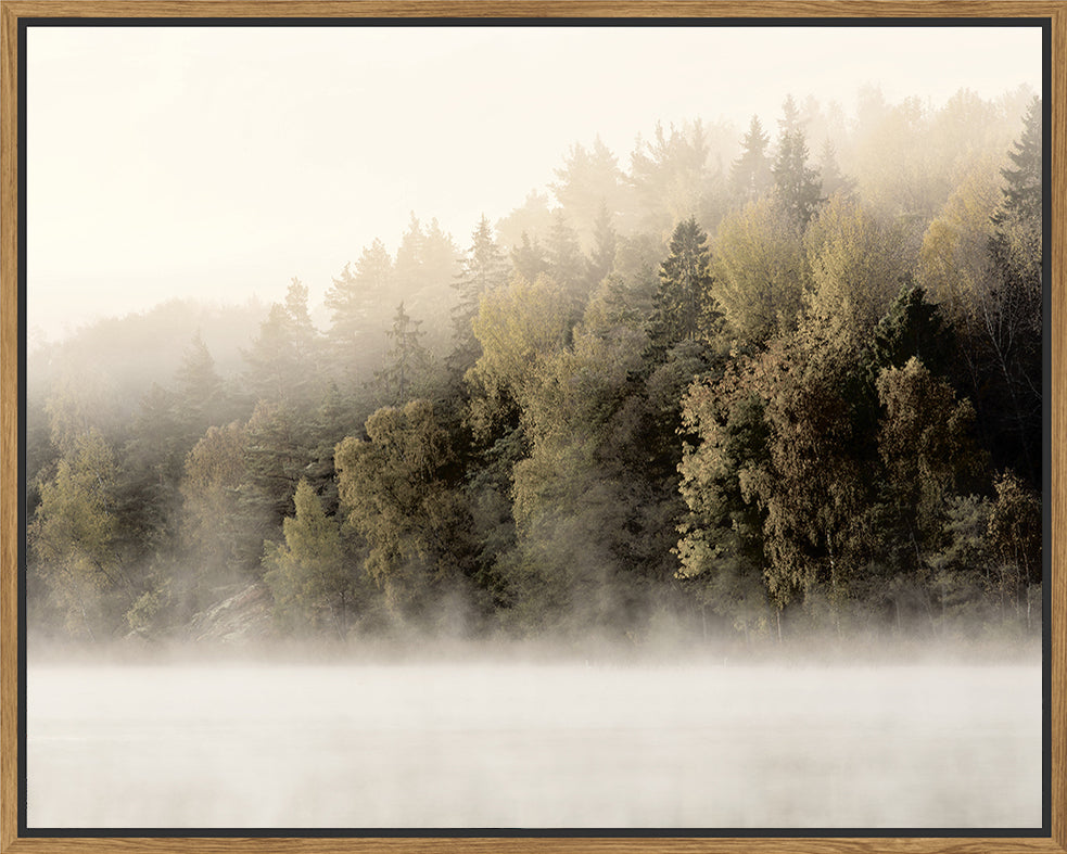 Misty Timberline Framed Canvas Print-Bibilo