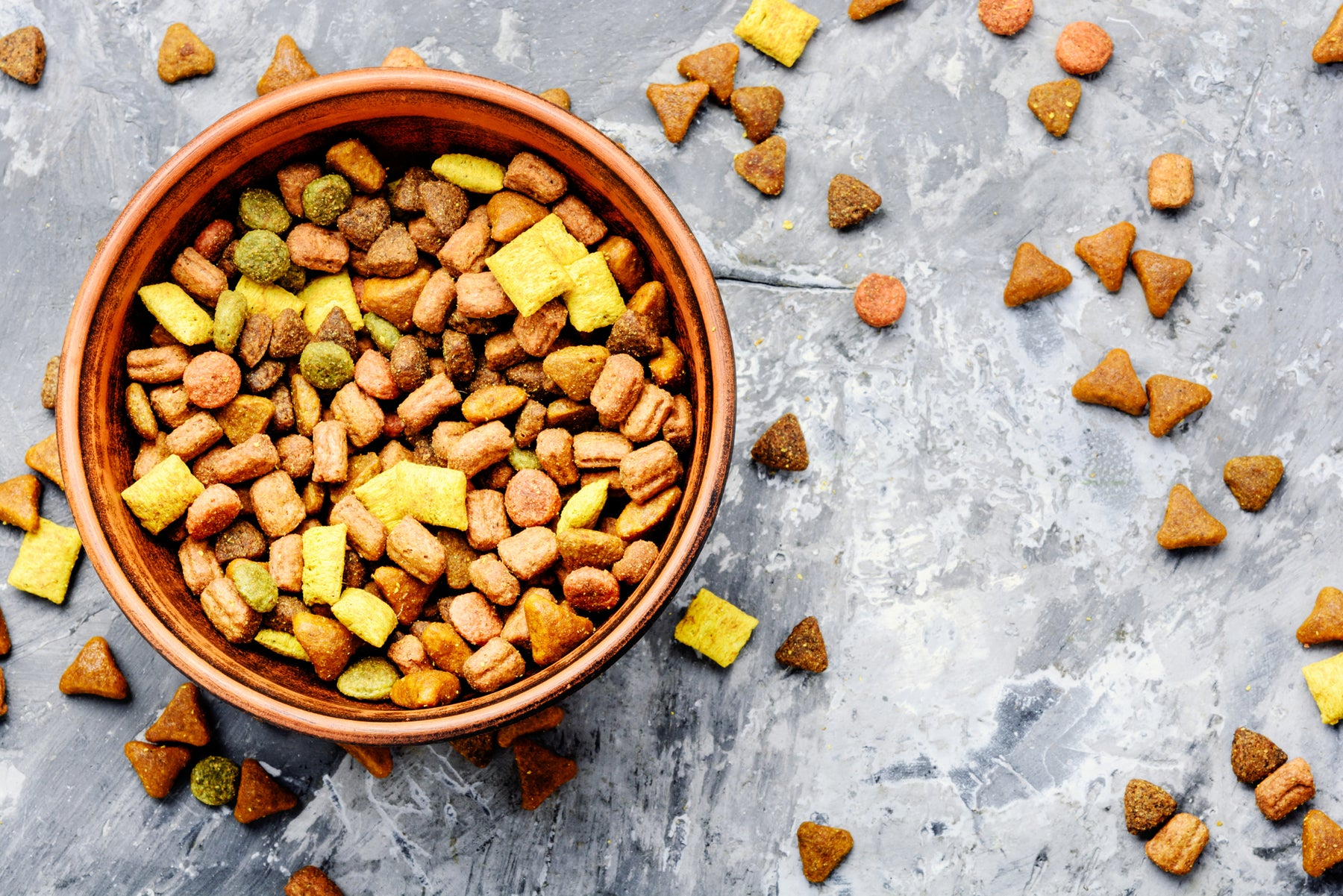 What Low-Protein Really Means in Cat Food