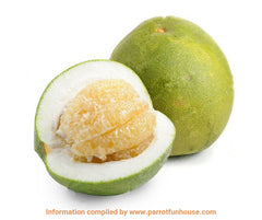 Safe fruits for birds pomelo