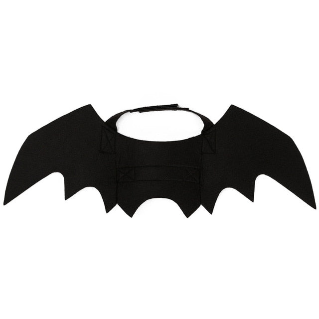 Bat Wing Clothes For Cats - Shop For Gamers