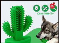 Cactus Chewable Toothbrush Toy - Shop For Gamers