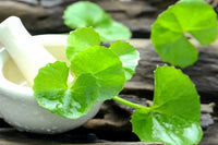 Herb of Grace: Brahmi
