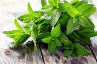 Benefits of Peppermint