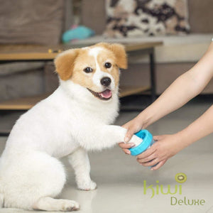 Most Effective Pet Paw Cleaner