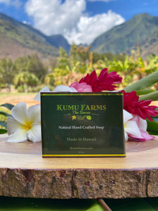 Exfoliating Hawaiian Soap -KFarms