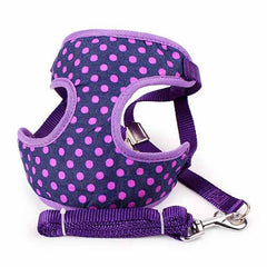 Small Dog Harness Leash