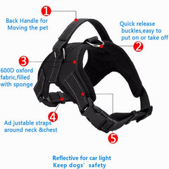 Soft Adjustable Harness