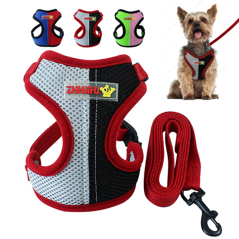 Nylon Dog Harness & Leash