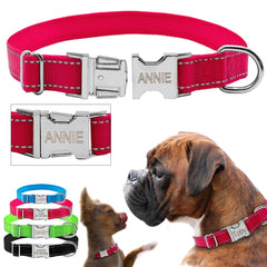 Anti-lost Nameplate Collars