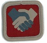 BADGE-ROLE SPECIFIC SERVICE TEAM