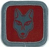 BADGE-ROLE SPECIFIC-CUB LEADER