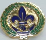 PIN - LAPEL - COMMITTEE MEMBER