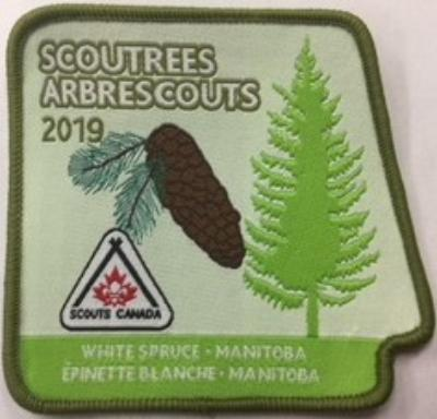 CREST - SCOUTREES 2019