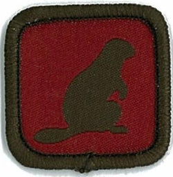 BADGE-ROLE SPECIFIC-BEAVER LEADER