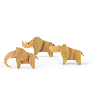 Wooden Magnetic Toys - Big Foot Kit