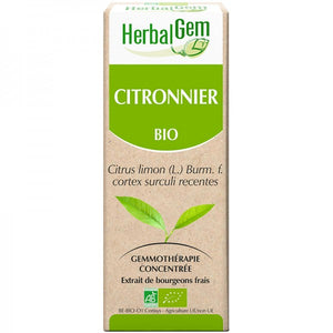 Citronnier bourgeon 50ml - HerbalGem - HerbalGem