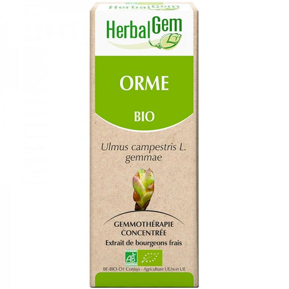 Orme bourgeon 15ml - HerbalGem - HerbalGem