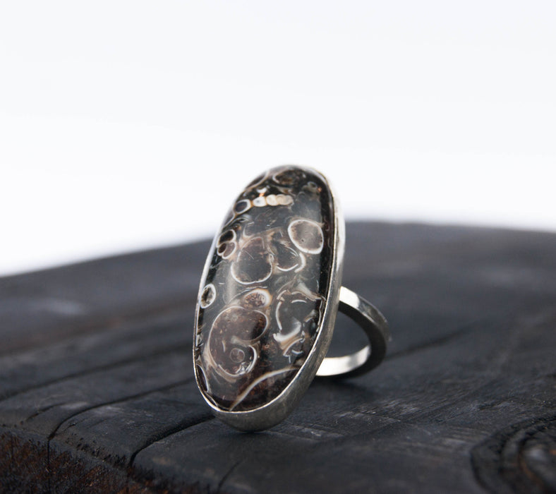 Turitella fossil ring