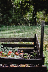 Composting vegetables climate change eco friendly sustainablePhoto by Eva Elijas from Pexels