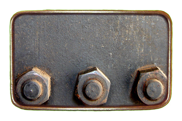 Bolts Buckle