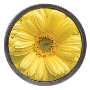 NEW Yellow Daisy Clik