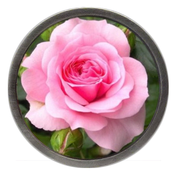 NEW Pink Tea Rose Clik