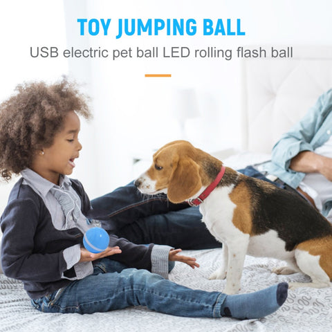 Waterproof Roller Pet Toy Ball With LED