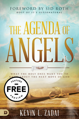The Agenda of Angels Free Feature Message (PDF Download)