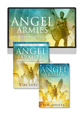 Angel Armies ECourse with Tim Sheets (Digital Download)