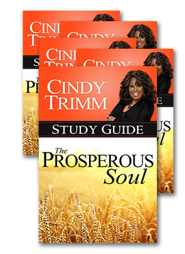 Bundle of 5 Prosperous Soul Study Guides