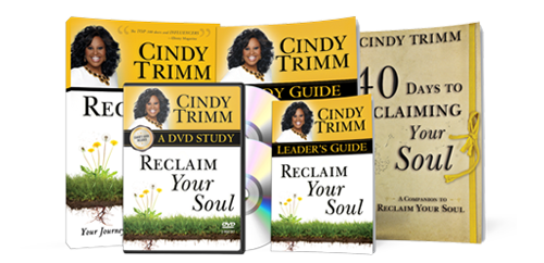 Reclaim Your Soul Small Group Study Kit