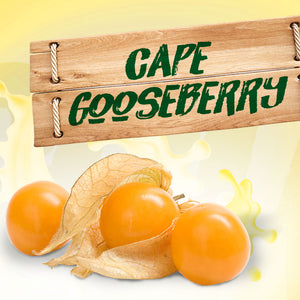 Cape Gooseberry Aseptic Fruit Puree