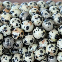10mm Dalmatian Beads Dalmatian jasper Beads | Fashion Jewellery Outlet
