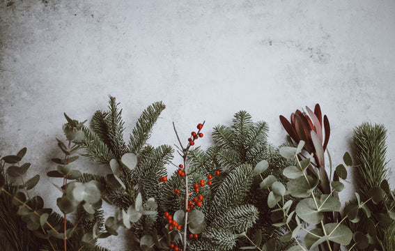 Dreaming of a Green Christmas? Holiday Decor Ideas Made with Sustainable Materials