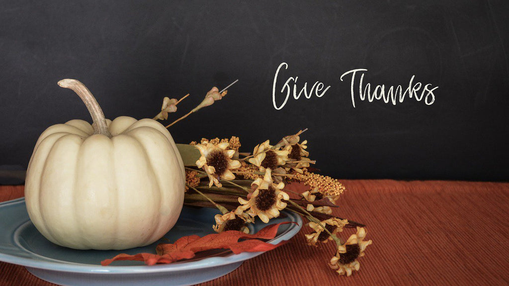 The True Meaning of Thanksgiving: 5 Humanitarian Organizations Honoring Turkey Day the Right Way