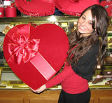 240 Piece Milk & Dark Chocolate Valentine's Day Assortment in Red Plush Heart Shaped Box