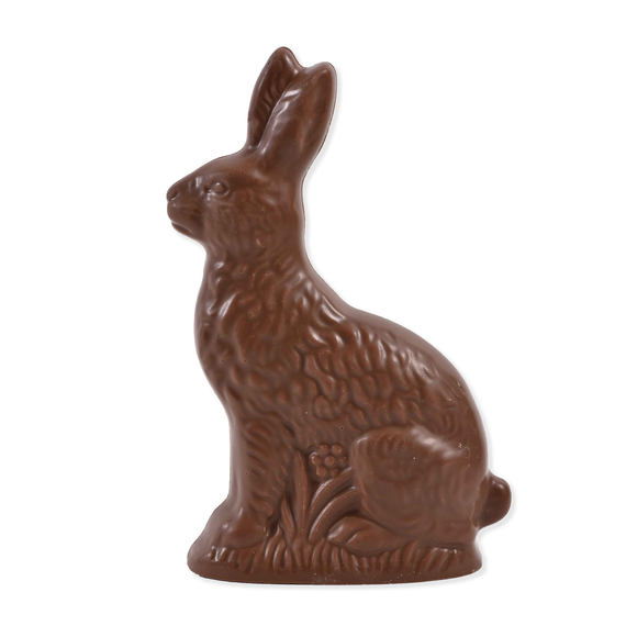 Milk Chocolate Solid Bunny (6 oz)