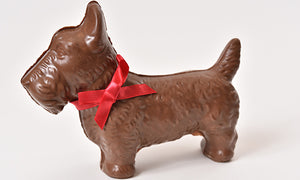 Milk Chocolate Scottie Dog (Hollow) - Conrad's Confectionery