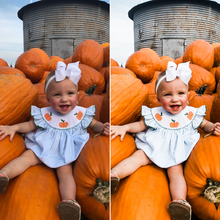 Load image into Gallery viewer, Fall Preset Collection