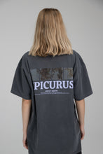 "Load image into Gallery viewer, ""Epicurus"" Stone Grey"