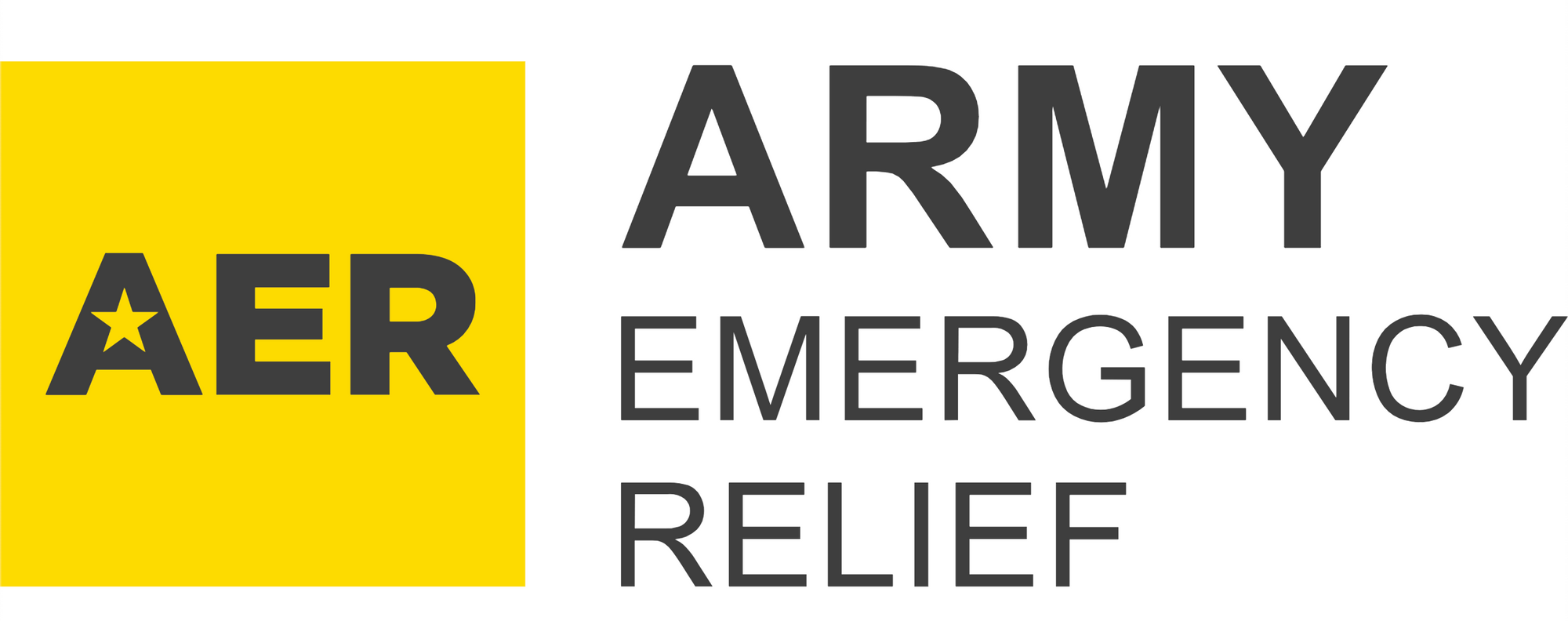 Army Emergency Relief Fund Receives 2nd Donation From Run Fierce Community!💪