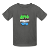 Falls Creek Is Calling - Youth Tagless T-Shirt - charcoal