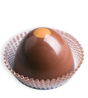 Chocolate Caramel Truffle