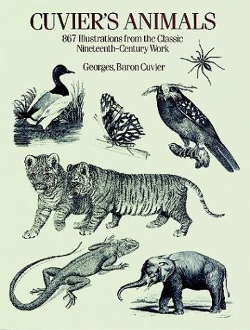 Cuvier'S Animals: 867 Illustrations From The Classic Nineteenth-Century Work (Dover Pictorial Archive Series)