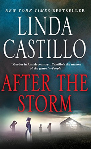 After The Storm: A Kate Burkholder Novel