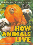 How Animals Live: Amazing World Of Animals In The Wild, The