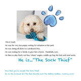 Most Wanted! The Sock Thief
