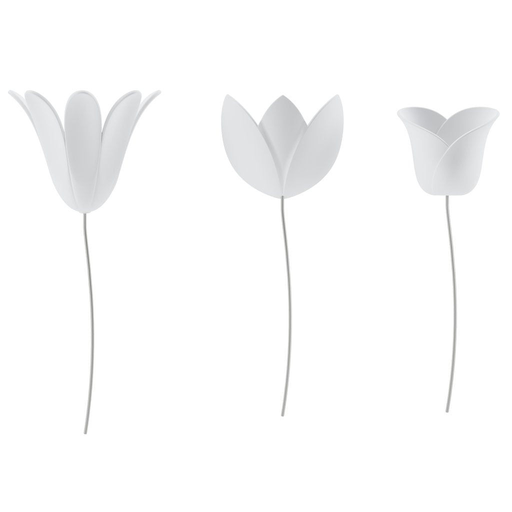 Umbra | Bloomer Tulip Wall Décor