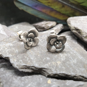Small succulent stud earrings