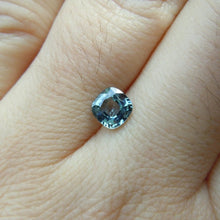 Load image into Gallery viewer, Montana Sapphire Cushion Cut 1 carat Blue